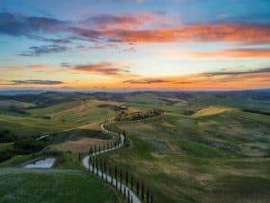 View on the Tuscan countryside at sunset. The hills are full of green cypresses, typical trees from Italy