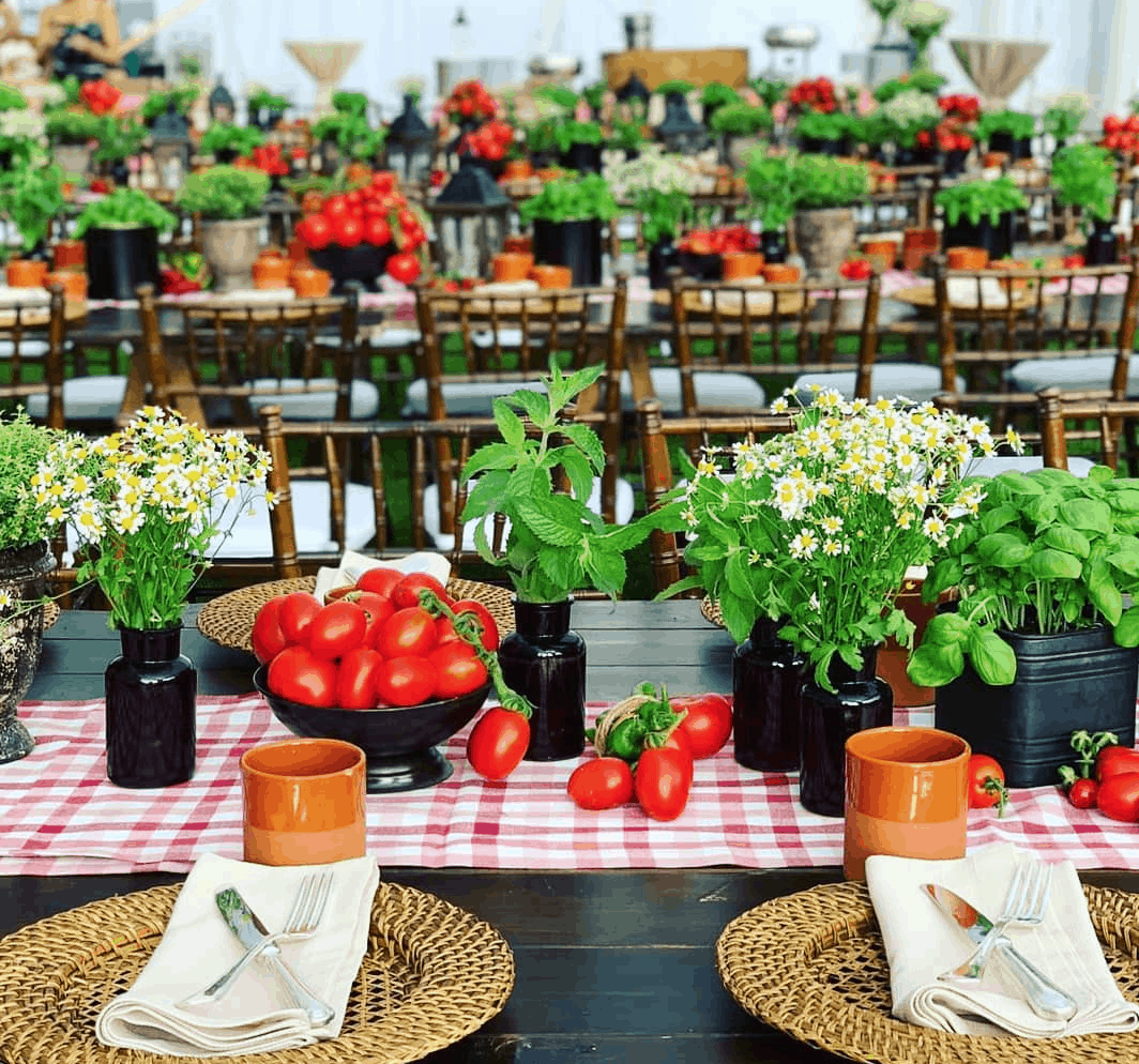 Table set up decorated with Italian tomatoes and Basil