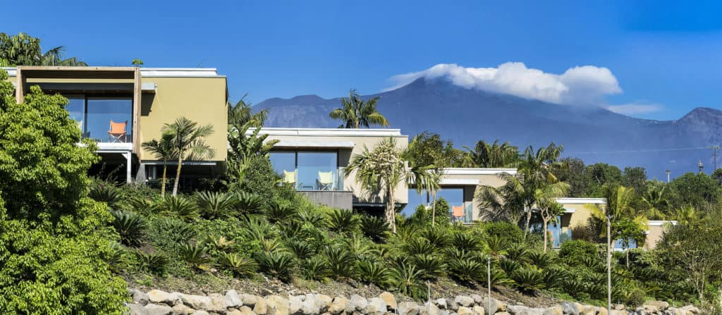 Donna Carmela wedding location surrounded by palms and mountains